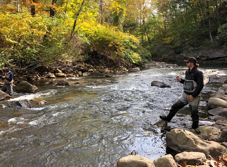 Maryland trout water hat trick