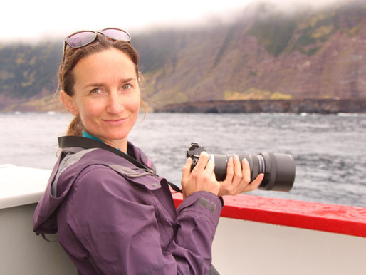 Gough Island Team 63 - When pictures can speak a thousand words