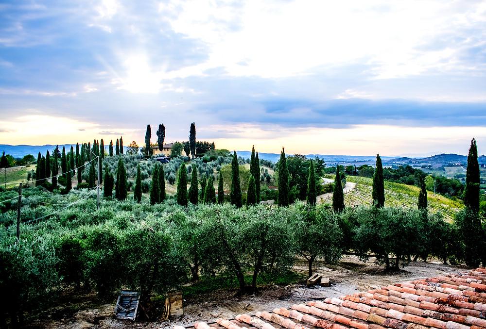 Тоскана-Италия-вид-из-дома.