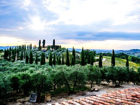 Йога тур в Тоскану, Италия. Йога и релакс на виноградниках Кьянти.