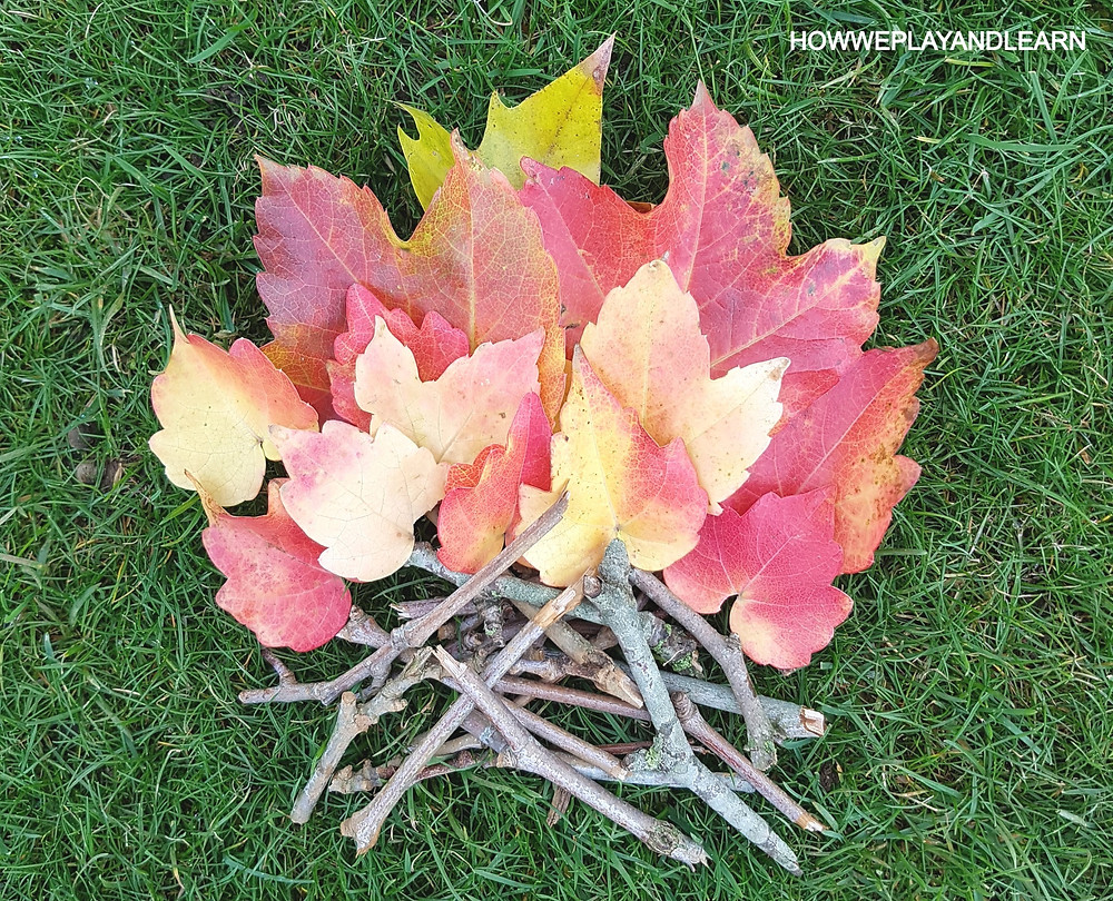 This bonfire art uses autumn leaves and sticks