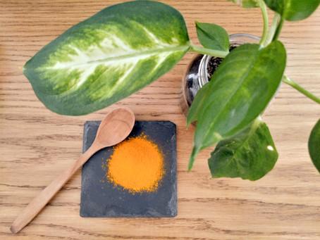 Les Super-aliments, leurs bienfaits pour notre santé et comment les intégrer dans notre alimentation