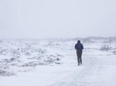 COME INNAMORARSI DELL'ISLANDA