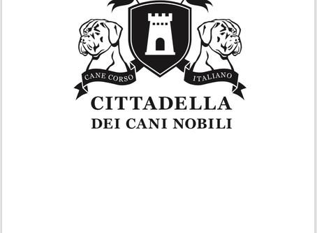 A-WURF CITTADELLA DEI CANI NOBILI