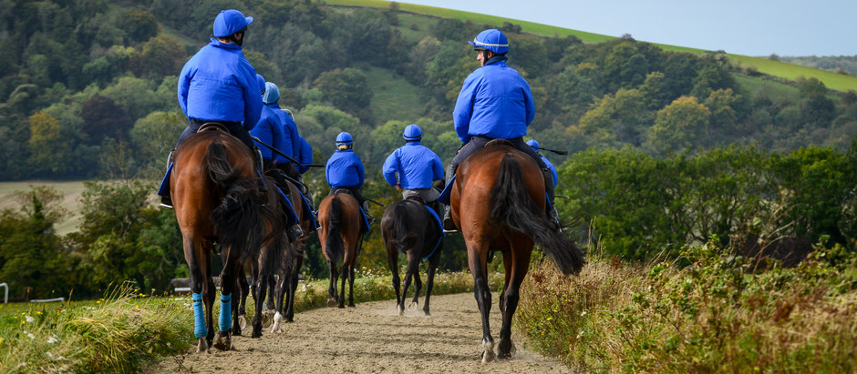Stable News - Saturday 18th April