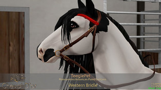 Cheval D'or - Western Bridle