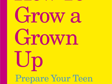 Growth mindset: lessons from How to Grow a Grown Up