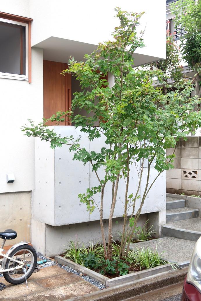 西東京市の家 II.jpg
