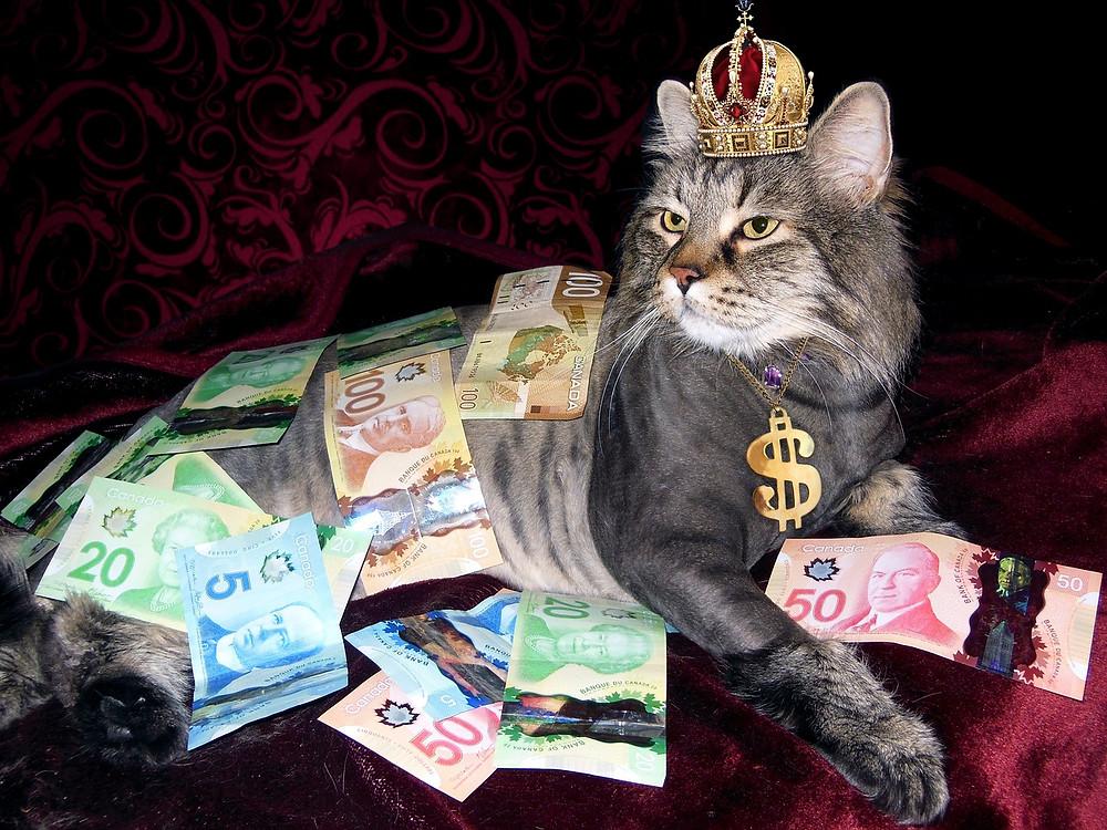 ambición, lujo, dinero. riquezas, sé el jefe, hectorrc.com