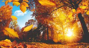 O Outono da Alma
