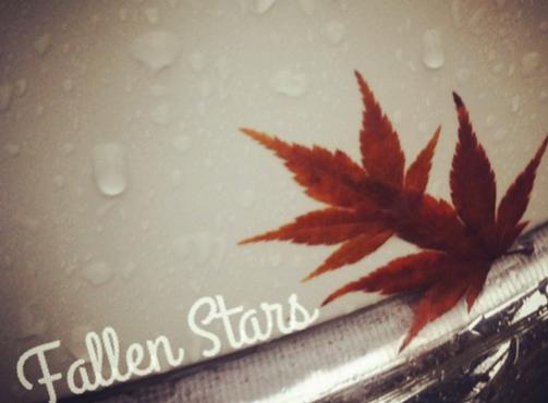 Fallen Stars: The Lost Bucket List