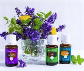 Essential Oils Basics