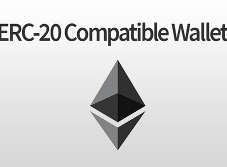 How to Obtain an ERC20 Wallet License in Estonia?