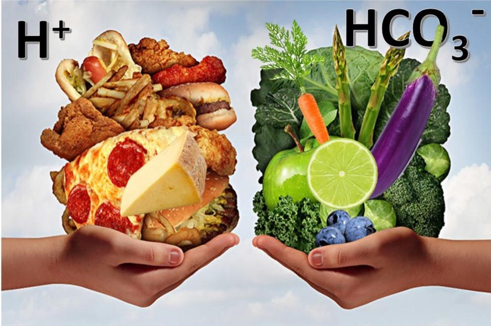Izquierda alimentos que vuelven ácido nuestro organismo. Derecha alimentos saludables que mantienen correcto nuestro pH