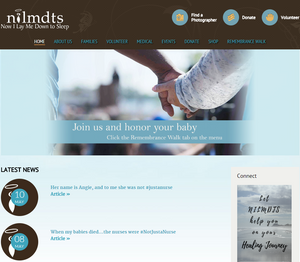 Homepage for NILMDTS.