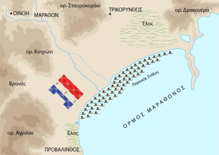 Παράταξη της ελληνικής φάλαγγας στην μάχη του Μαραθώνα (Εκπαιδευτικό πρόγραμμα στο Μουσείο του Μαραθώνα).