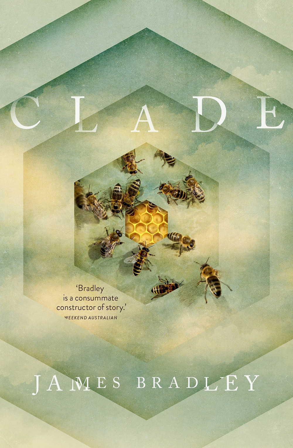 Clade by James Bradley : the book slut book reviews thebookslut