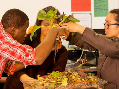 How education can help make history of food inequality.
