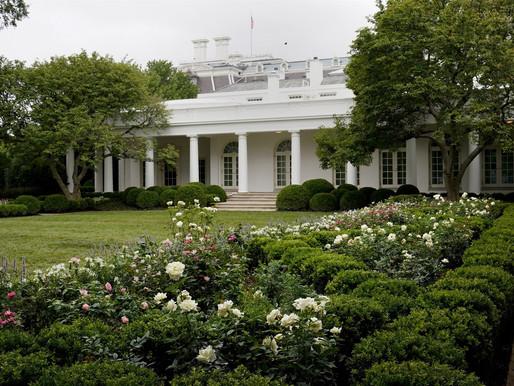 Melania Trump reveals the new White House Rose Garden