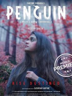 Penguin Movie Download