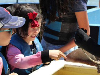 Marine Science Camp - 2020 Sessions and Dates