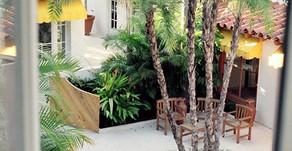 Transformed: Living & Working In A Palm Beach Via