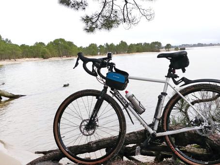 Balade à vélo dans la forêt des Landes de Gascogne