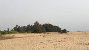 BATTICALOA - 22 ACREs LAND FOR SALE - KIRANAKULAM
