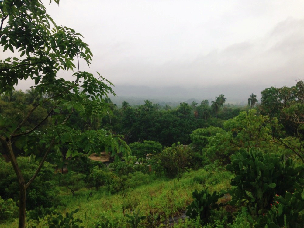 Vue depuis grottes de Dambulla au Sri Lanka