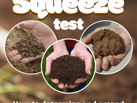 The Squeeze Test