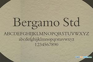 Font Bergamo Std Free