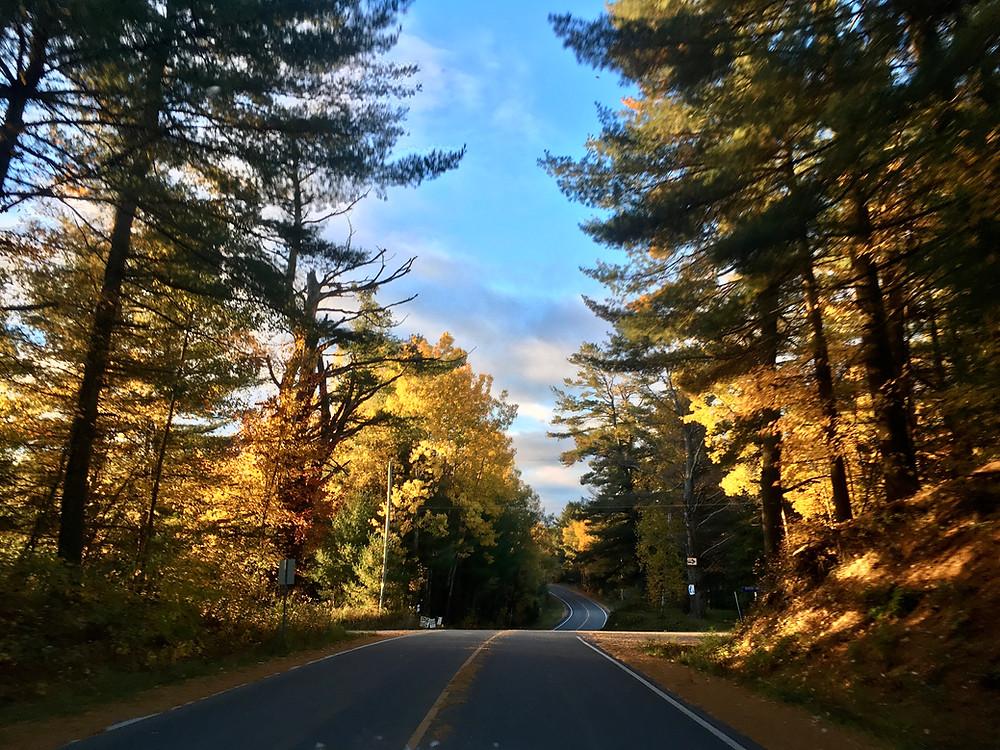 Haliburton country road