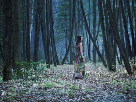 Un partage aventure évasion dans les forêts...