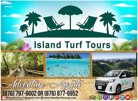 Our Island Turf Tours
