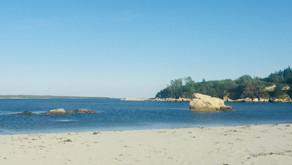 Beach clean up at Carters Beach!