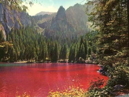 """Lago di Tovel - """"Il Lago Rosso"""""""