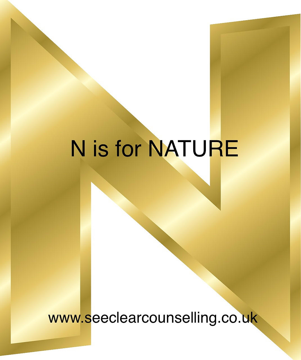 Gold letter N for Nature