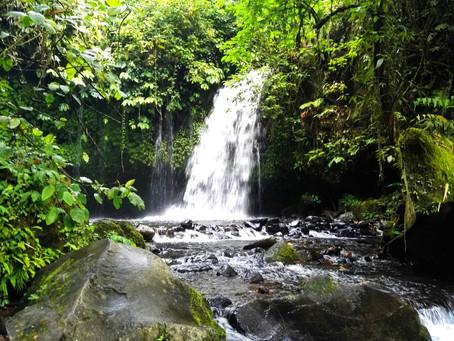 Südostasien aus der Naturbengelperspektive (Teil 1/2)