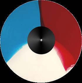 3 Colour Segment Vinyl Record