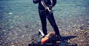 Spearfishing in Plymouth! Do you want to try it?