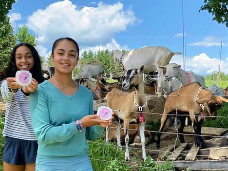 Rural Teen Entrepreneurs: Meet the sister team behind Notes from the North