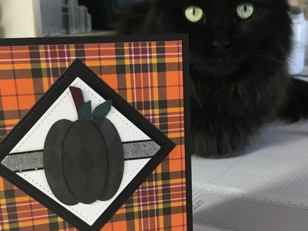 FALL in Love with Plaid Tidings DSP
