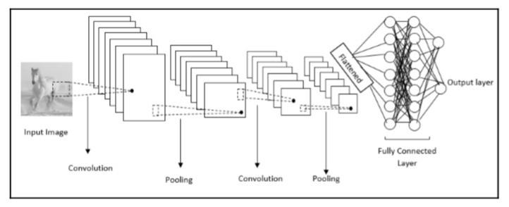 Convolutional Neural Networks(CNNs)