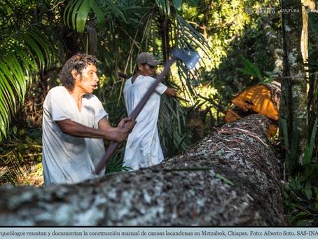 Arqueólogos documentan la construcción de una canoa lacandona