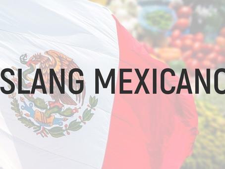 Diccionario breve del español de México