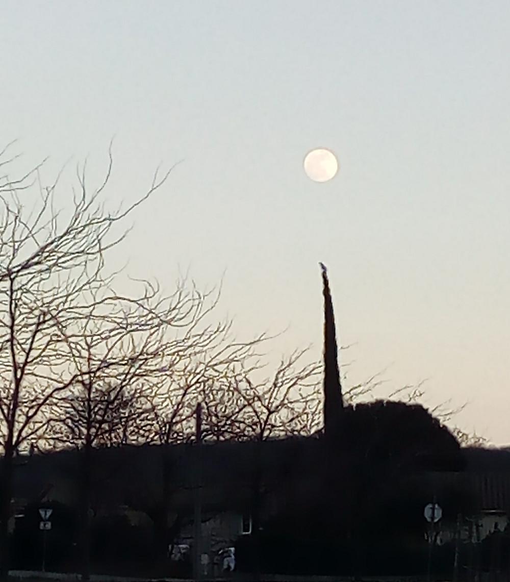 Lune Musset