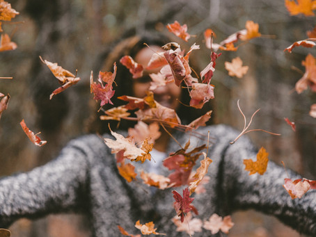 How to Clean Up Fallen Leaves to Protect our Lakes