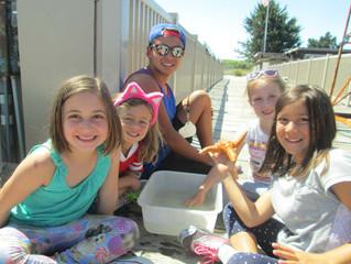 Marine Science Camp - Internships and Volunteering