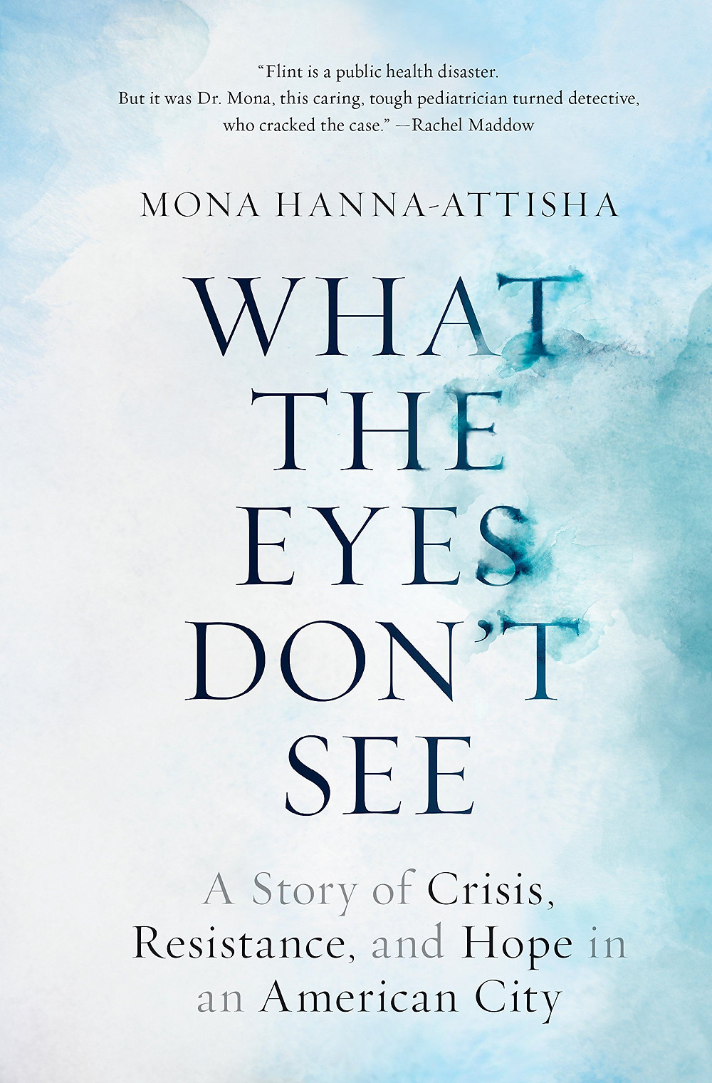 What the Eyes Don't See by Mona Hanna-Attisha : the book slut book reviews thebookslut