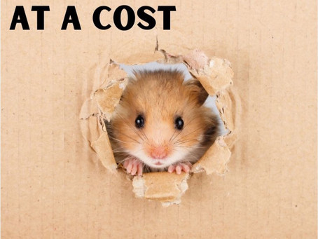 At A Cost - By Pastor Thomas Engel